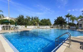 Windsor Palms Swimming Pool